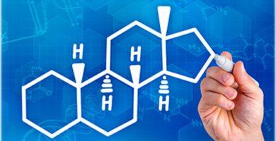 Funciones de las Hormonas