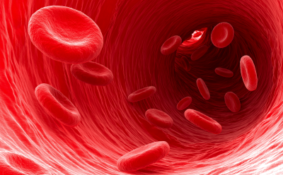 Funciones de los glóbulos rojos