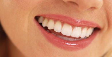 funciones de los dientes
