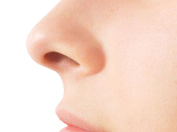 Funciones de la nariz
